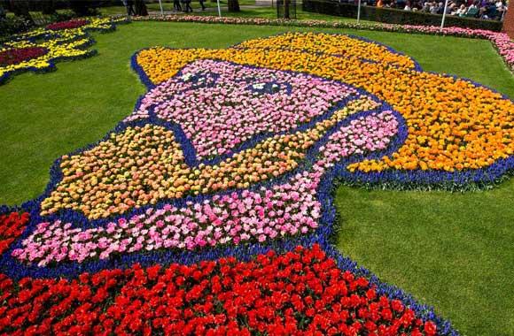 tulipKeukenhof-holland